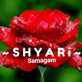 Hindi_Shyari