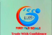 IGC-World-Best-Forex-Signals