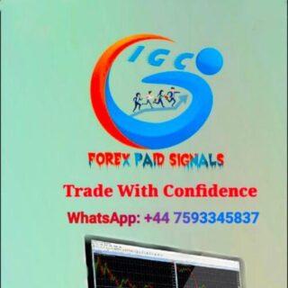 IGC-World-Best-Forex-Signals