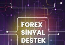 fx-destek-sinyal