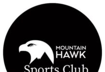 Mountain-Hawk
