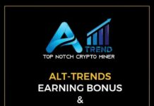 ALT-TRENDS INVESTMENTS