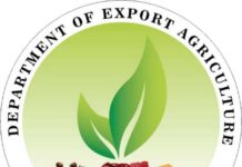 Agriculture Exports