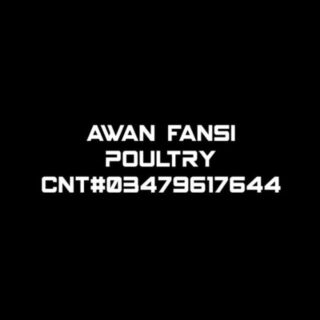 Awan Fansi poultry