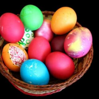 Bihar Egg Trades