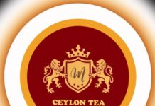 Ceylon Tea Export