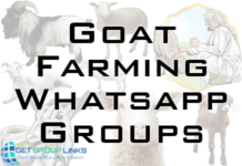 Goat Farming Whatsapp Group Link