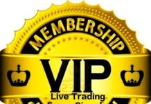 Live Trading Forex Signals