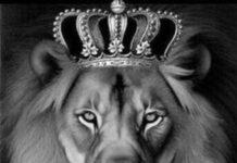 Ludo_King_16