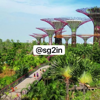 Singapore To India