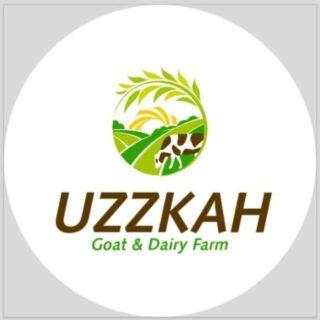 UZZKAH Goat
