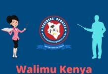Walimu Kenya Updates