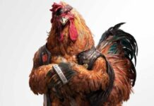 dinga gujrat chicken