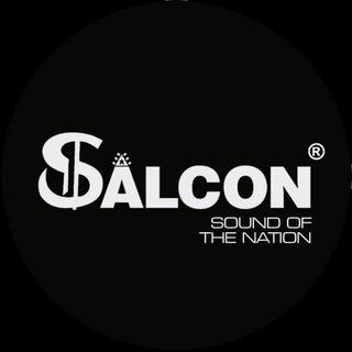 Salcon Electronics India
