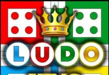 day-night-ludo