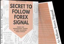 FX SIGNALS EDUCATION