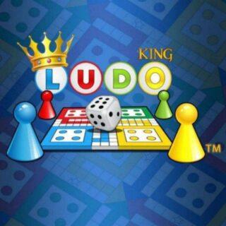 Indian ludo king