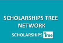 Scholarships Tree