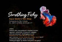 Something Fishy Aquaworld
