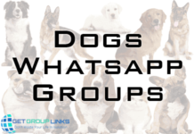 dog sale whatsapp group link