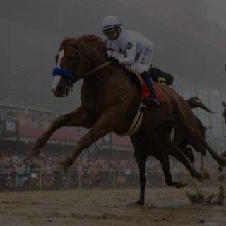 horse-racing-equestrian-sport