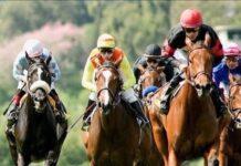 machine-horse-racing-free