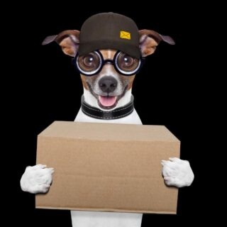 pet-foods-home-delivery
