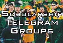 scholarship telegram group