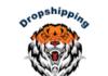 Dropshipping Jungle