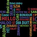 Practice Your Language