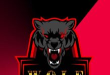 Wolf account and uc sale pk