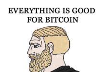 bitcoin-twitter-mastodon-backup