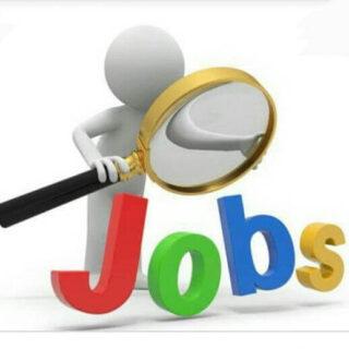 job-alerts-news