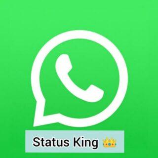 whatsapp-status-hd-download