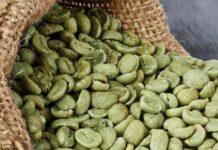 Ethiopian Green Coffee