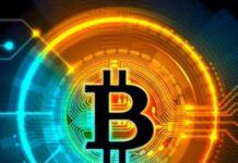 bitcoin-investors