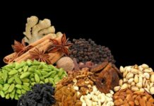 dry-fruits-spices-trade