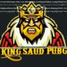 king-saud-pubg-youtuber